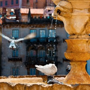 City Bath