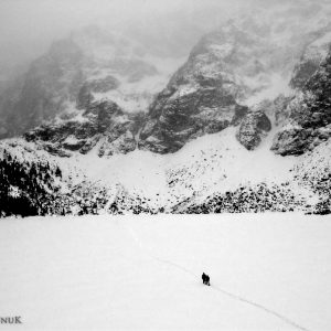 Snow Wanderers