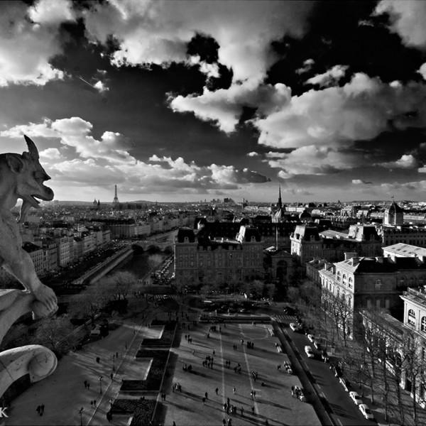 Gargoyle's View